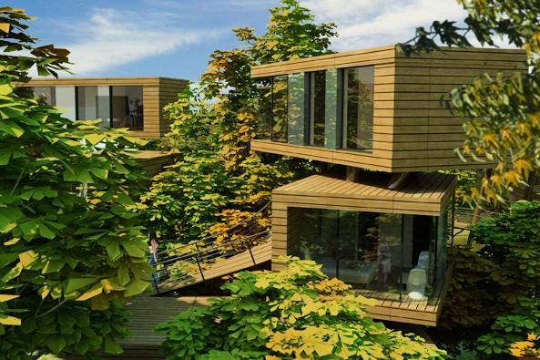 Tree Top Resort